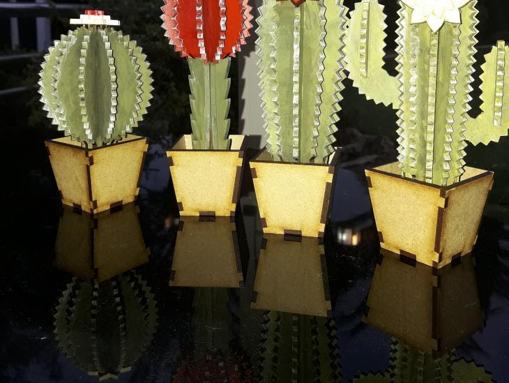 Fotografía Cactus de madera