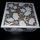 Fotografía Caja blanca
